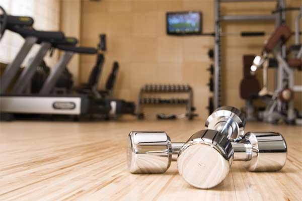 gym - SUPPLIES